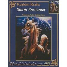Storm Encounter