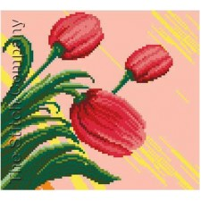 Tulips Composition