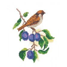 Diamond Painting Mus - Sparrow