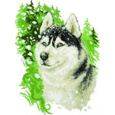 Diamond Painting Husky