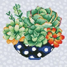 Diamond Art Schaal Catussen - Succulent Bowl