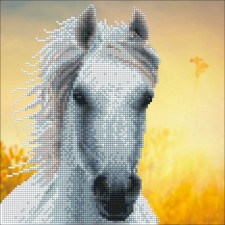 Diamond Art White Horse