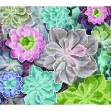 Diamond Art Cactussen - Succulents