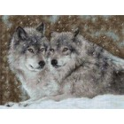 Borduurpakket Two Wolves