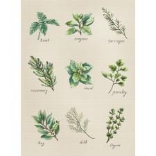 Borduurpakket Specerijen en kruiden - Spices and Herbs