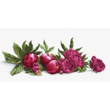 Borduurpakket Pioenrozen en Rode Appels - Peonies and Red Apples