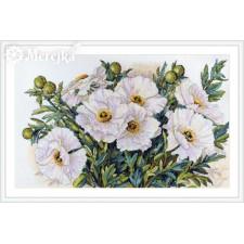 Borduurpakket Witte Bloemen - White Flowers