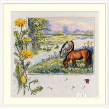Borduurpakket Paarden - Horses