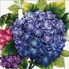 Voorbedrukt borduurpakket Hortensia - Hydrangea