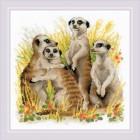Borduurpakket Stokstaartjes - Meerkats