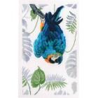 Borduurpakket Ara - Macaw