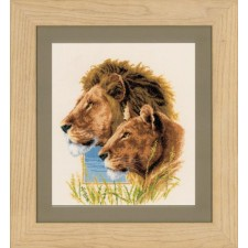 Counted cross stitch kit Lion couple