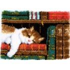 Latch hook rug kit Cat on bookshelf