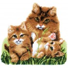 Latch hook shaped rug kit Cat family